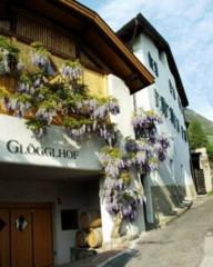 Weingut Glögglhof